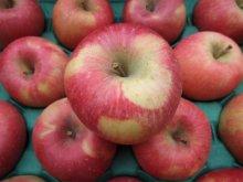 他の写真2: 葉とらずりんごサンふじ秀10キロ箱