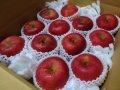 葉とらずりんごサンふじ特選10キロ箱
