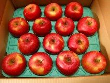 他の写真1: 葉とらずりんごサンふじ特秀10キロ箱